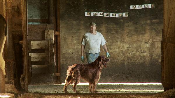 Betting The Farm